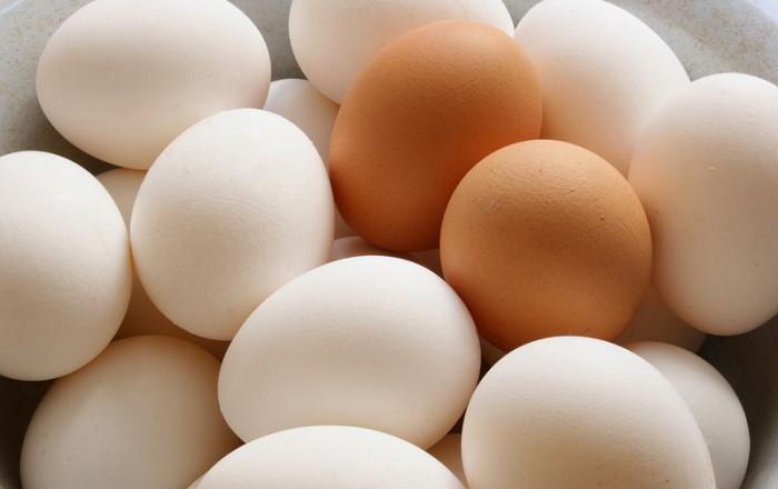 Egg Safety Basics